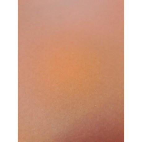 CANSON COLORLINE - 50x70cm - 220 g/mq - COLORE 140 NOISETTE - 1 FOGLIO
