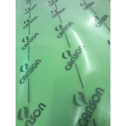 CANSON COLORLINE - 70x100cm - 220 g/mq - COLORE 139 PRAIRIE - 1 FOGLIO
