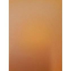 CANSON COLORLINE - 70x100cm - 220 g/mq - COLORE 132 CLEMENTINE - 1 FOGLIO