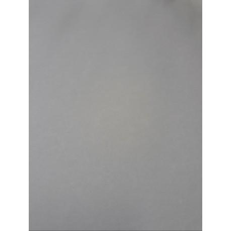 CANSON COLORLINE - 70x100cm - 220 g/mq - COLORE 141 SOURIS - 1 FOGLIO