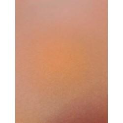 CANSON COLORLINE - 70x100cm - 220 g/mq - COLORE 140 NOISETTE - 1 FOGLIO