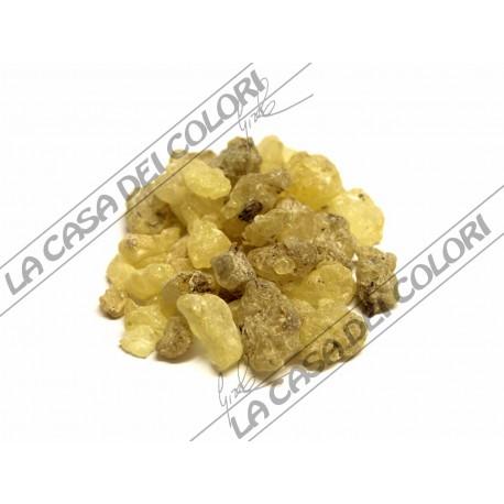 GOMMA SANDRACCA - 700 g